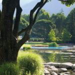 Pohled na zahrady lázní Merano