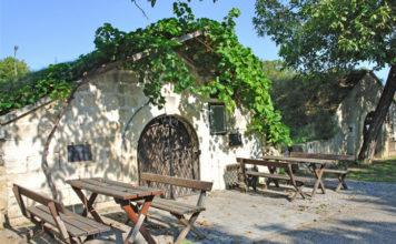 Vinný sklípek v oblasti Neusidlersee