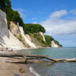 Pláž u Kieler Bach s popadanými kmeny stromů