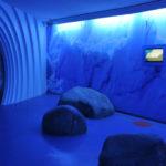Expozice o době ledové v Nationalpark-Zentrum Königsstuhl v přírodním parku Jasmund