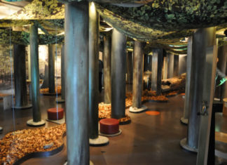 Expozice v Nationalpark-Zentrum Königsstuhl v přírodním parku Jasmund