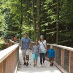 Naturerbe Zentrum Rügen - stezka v korunách stromů
