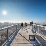 Naturerbe Zentrum Rügen - vyhlídková věž Orlí hnízdo v zimě
