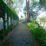 Jardim tropical Monte Palace - azulejaria