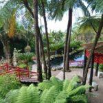 Jardim tropical Monte Palace - orientální zahrada