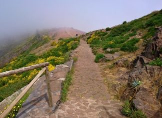 Pico do Arieira - cesta na Pico Ruivo