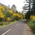 Cesta autem na Pico do Arieiro