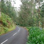 Cesta do Ponta do Pargo po silnici ER101