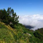 Cesta na Pico Ruivo