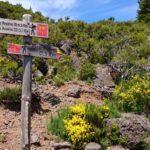 Cesta na Pico Ruivo - rozcestí PR 1.1 a PR 1